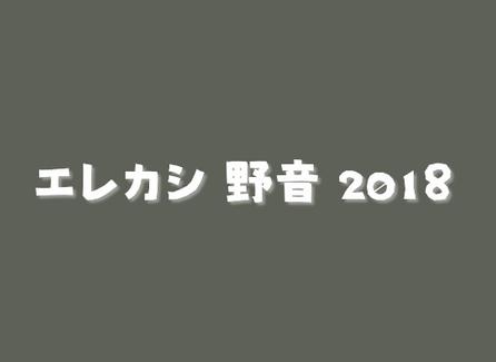 エレカシ野音2018